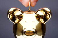 Złoty wspierany przez banki centralne